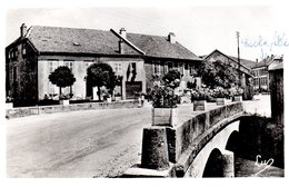 COLROY LA GRANDE  -  CPSM  -  Le Pont  -  N° C 173 - Colroy La Grande