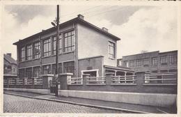Paturages Les Ecole Du Fief - Colfontaine