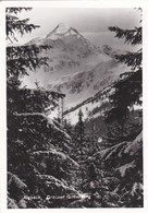 Alpbach, Grosser Galtenberg - Neustift Im Stubaital