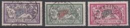 206 à 208 MERSON - Belles Pièces Avec Oblitérations Soignées - 1900-27 Merson