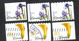Sc. # 2073-73 Flower Definitive Booklet And Coil Varieties Set Used 2004 K251 - 1952-.... Règne D'Elizabeth II