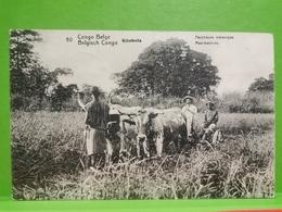 Congo Belge Kitobola, Faucheuse Mécanique - Congo Belge - Autres