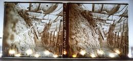CHAMPAGNE BOYAU CAMOUFLE TRANCHEE WW1 GUERRE PHOTOGRAPHIE PLAQUE DE VERRE - Diapositiva Su Vetro