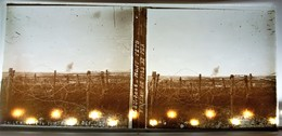 CHAMPAGNE MONT-TETU RESEAU DE FILS DE FER WW1 GUERRE PHOTOGRAPHIE PLAQUE DE VERRE STEREOSCOPIQUE MILITARIA - Diapositiva Su Vetro