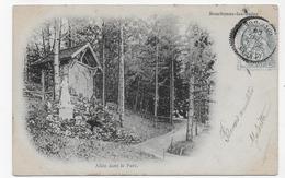 (RECTO / VERSO) BOURBONNE LES BAINS EN 1905 - ALLEE DANS LE PARC - BEAU CACHET - CPA PRECURSEUR VOYAGEE - Bourbonne Les Bains