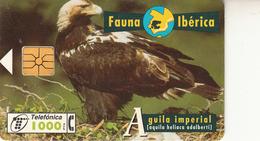 Fauna Ibérica  Aguila Imperial - Spanje