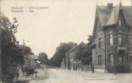 Oostmalle - Zicht Lierschelei - Vue 1923 - Malle