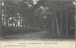 Oostmalle - In De Mastbosschen - Aux Bois De Sapins - Malle