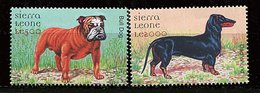 (cl 25 - P4) Sierra Leone** N° 3149/3150 (ref. Michel Au Dos) - Chiens - - Sierra Leone (1961-...)