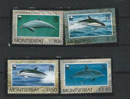 MONTSERRAT - 1990 - WWF - WHALES - SET- MNH - Montserrat