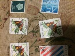 AUSTRALIA FARFALLE 1 VALORE - Stamps