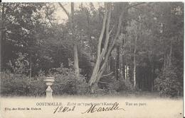 Oostmalle -  Zicht In 't Park Van 't Kasteel - Vue Au Parc - Malle