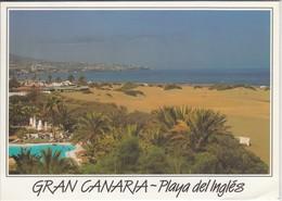 GRAN CANARIA - Playa Del Inglés,   Nice Stamp Fauna Espanola - Gran Canaria