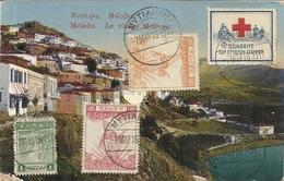 CARTE DE MOLIVOS (METELIN) + VIGNETTE CROIX ROUGE . ENVOYEE PAR CAPITAINE FRANCAIS . ARMEE D'ORIENT . 1916 - Marcofilie - EMA (Printer)