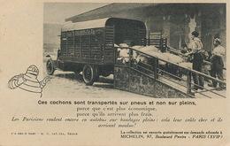 Camion Automobile Bibendum Michelin . Transport De Cochons . Pneus . Caoutchouc - Camion, Tir