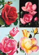 JOLIES ROSES DE FRANCE - Lot De 4 Cp - Ed. Yvon N° 1, 4, 11, 12 : SORAYA, CENTENAIRE DE LOURDES, PINK PEACE, JENNY - Bloemen
