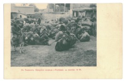 U 22 - 15431 TASHKENT, Camel Caravan, Uzbekistan - Old Postcard - Unused - 1903 - Oezbekistan