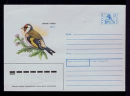 Birds Oiseaux Cover Postal Stationery URSS 1992 Faune Animals Gc4906 - Birds