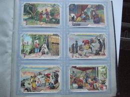 Mooi Liebig Album Anno 1901 à 1905, Het Zijn  50 Complete Reeksen Van Elke 6 Kaarten 7cmX11cm, Allemaal Zeer Goede Staat - Liebig