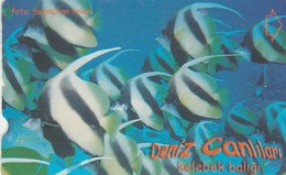 Turkey, TR-TT-N-338B, Kelebek Baligi, Sea Creatures, Fish, 2 Scans. - Turkey