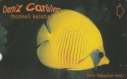 Turkey, TR-TT-N-340A, Maskeli Kelebek, Sea Creatures, Fish, 2 Scans. - Turquia
