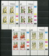 Ciskei Mi#  242-5 Zylinderblöcke Postfrisch/MNH Controls - Flora - Ciskei
