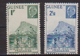 GUINEE  N°  YVERT  :  176/77   NEUF AVEC  CHARNIERES      ( CH   3 / 26 ) - Guinée Française (1892-1944)