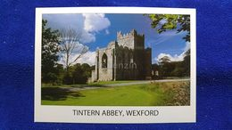 Tintern Abbey, Wexford Ireland - Wexford