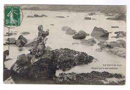 BLAINVILLE  SURPRIS PAR LA MER MONTANTE - Blainville Sur Mer