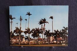 E-178 / Francaise / Guyane - Cayenne, Place Des Palmistes   / Circule - Cayenne