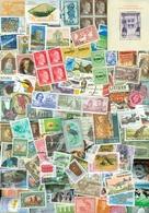 1 KILO TEMBRES DU MONDE SANS PAPIER A PROPOS 20.000 TEMBRES De CHARITE (194) - Lots & Kiloware (min. 1000 Stück)