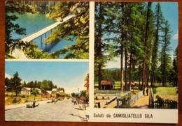 Calabria - Sila - Saluti Da Camigliatello - 1966 - Italy