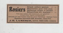 Rosiers Lamesch Rosiériste Dommeldange Luxembourg  1923 - Pubblicitari