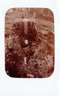 Carte Photo Originale Ancienne Tombe En Forêt & Croix De Bois Pour Couronne Autour D'un Christ Vers 1900/10 - Luoghi
