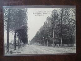 LAMBERSART-   Avenue De L'hippodrome      édit: L.S Hautmont - Lambersart
