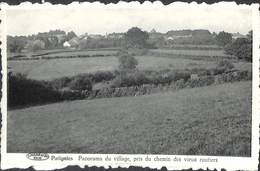 Patignies - Panorama Du Village, Pris Du Chemin Des Vieux Routiers - Gedinne