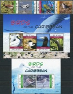 SAINT KITTS 2010 Birds Of The Caribbean Animals Fauna MNH - Birds