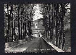 Italie - Vallombrosa - Viale D'Ingresso Alla Badia ( Ediz. Monaci Benedettini Di Vallombrosa ) - Altre Città
