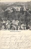 Schönberg Mit Schloss (Gebr. Dietze 1905) - Bensheim