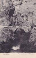 Anti Liban Pont Romain Barada Lebanon Syria Antique Postcard - Arabia Saudita