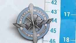 Argentina Argentine Air Force Badge Emblem #12 - Luchtmacht