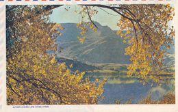 Autumn Leaves From Lake Hayes Otago Rare New Zealand Aerogramme - Nuova Zelanda
