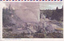 Pohutukawa Blossom Hicks Bay East Cape North Island New Zealand 2x Aerogramme - Nuova Zelanda