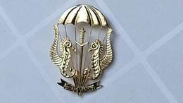 Argentina Argentine Navy Amphibious Commando Diver Paratrooper  Pin Badge  #12 - Marine