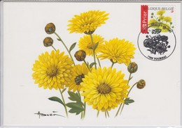 Buzin Chrysanthemum 10-09-2005 - 2001-2010
