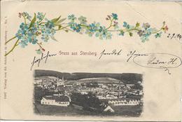 1900 - STERNBERK  Sternberg , Gute Zustand ( 1 Knick), 2 Scan - Tchéquie
