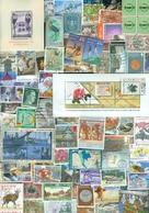 1 KILO TEMBRES DU MONDE SANS PAPIER A PROPOS 20.000 TEMBRES De CHARITE (198) - Lots & Kiloware (min. 1000 Stück)
