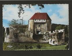 14 Caen / Ruines Du Château,la Porte Des Champs - Caen