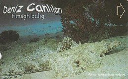 Turkey, TR-TT-N-345B, Timsah Baligi, Sea Creatures, Fish, 2 Scans. - Turkey