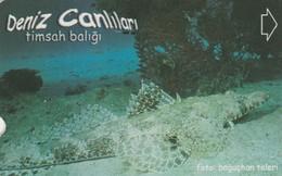 Turkey, TR-TT-N-345A, Timsah Baligi, Sea Creatures, Fish, 2 Scans. - Turkey